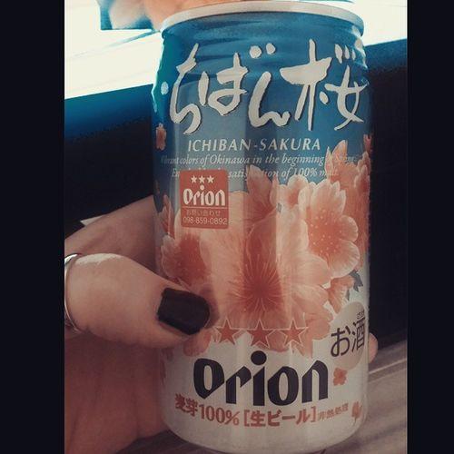 시즌한정판으로 나오는 오리온사쿠라맥주 맛은...쓰다써? 칭따오 가 최고ㅋㅋ?? Orion Ichiban -SAKURA 生ビールオリオン Okinawa沖縄旅行 Made with @nocrop_rc rcnocrop