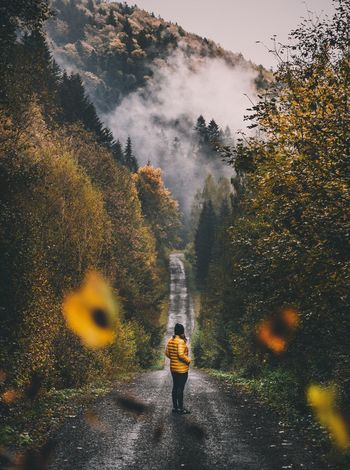 Lost In The Landscape Rear View Real People Tree Full Length Leisure Activity Nature One Person Forest Lifestyles Day Beauty In Nature Outdoors Mountain Standing Adventure Scenics Women Young Adult Sky People