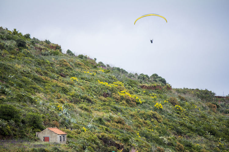 LOW ANGLE VIEW OF PERSON PARAGLIDING