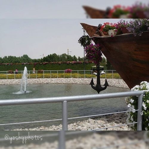 Love will always be the port where I want to anchor...Moncoeurdansunevalise Micorazonenunamaleta MiracleGarden Dubai Love Beautifulplace Photographer Amateur LoveTravel March2015 Mydream YoshyPhotos Imhere