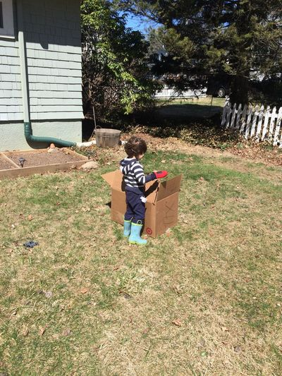 Rear view of a boy standing on lawn