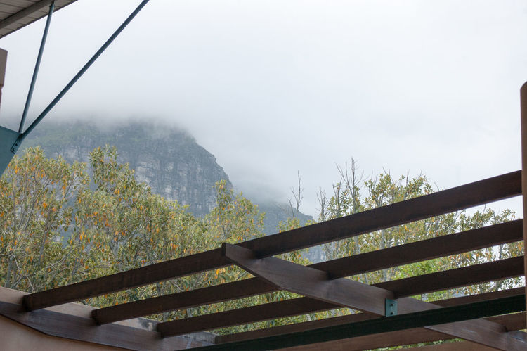 The beautiful mountain surrounding at Kirstenbosch national Botanical Garden, Cape Town, South Africa Beauty In Nature Day Fog Kirstenbosch Kirstenbosch National Botanical Garden Mountain Mountain Range Nature No People Outdoors Railing Scenics Sky Tree