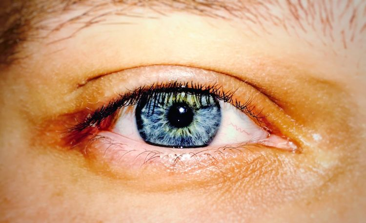 Human Eye Real People Looking At Camera Close-up Eyelash Lifestyles Full Frame Human Body Part Portrait Eyeball One Person Sensory Perception Eyesight Iris - Eye Backgrounds Women Eyebrow Vision Outdoors People Blue Eye EyeEm Best Shots