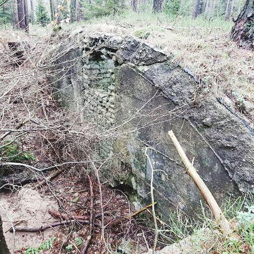 Outdoor Wandern Lüneburgerheide #bushcraft Bunker Lostplaces Day Outdoors Full Frame Backgrounds No People Nature Field
