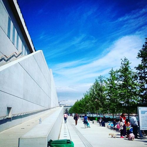 Adult Architecture Athens Blue Sky Building Exterior Built Structure Culture Day Greece Large Group Of People Lifestyles Men Modern Greece Outdoors People Real People Sky Stavros Niarchos Foundation Cultural Center Tree Urban Geometry White And Blue Women