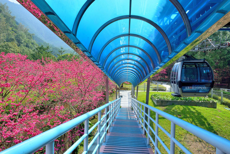 Architecture Beauty In Nature Day Green Color Modern Nature No People Outdoors Sky The Way Forward Transportation Tree 九族文化村 台灣 性質 旅行 櫻花 步道 空中 纜車 花園 高空