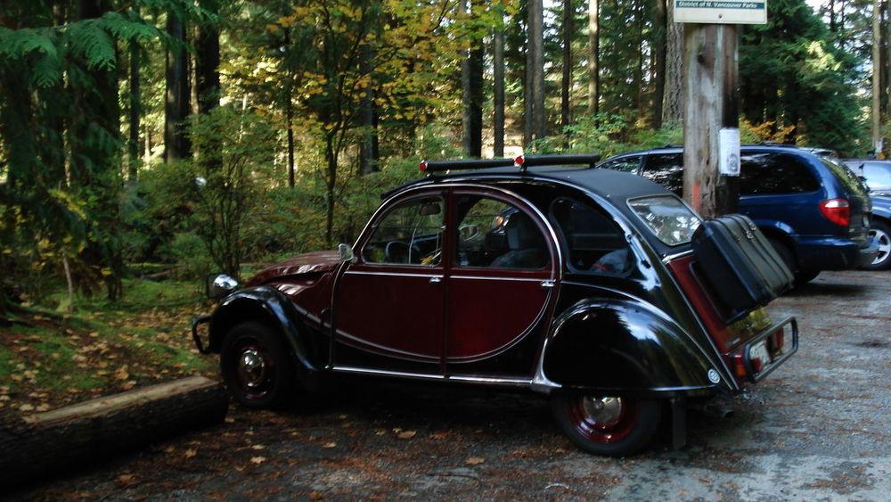 Classic Car Car Land Vehicle