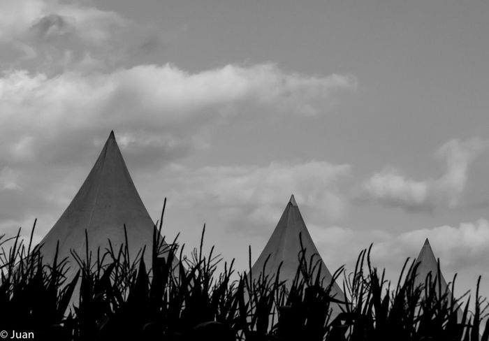 Built Structure Nature Black And White Black & White No People Blackandwhite