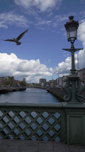 Dublin Ireland Liffey Streetphotography Street Photography Summer Eye4photography  Moment Authentic Moments