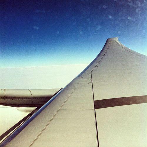 That wingflex tho 👌. Missed flying on the B777-300ER badly 😭😢✈✈✈ Pixlr Emirates Emiratesairlines Ek162 boeing B77W B777 wingflex