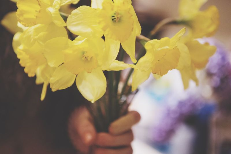 """""""I brought you Daffodils in a pretty string 