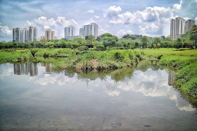 Cloud Cloudy Landscape Nature Nparks Nparksbuzz Reflection Tranquility