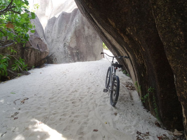 Outdoors Transportation Ladigue Ladigueisland Bycicle Transportation Vacations Tropical Climate Travel Destinations Tourism Seychelles Islands Tranquility Seychelles Adventure Sand