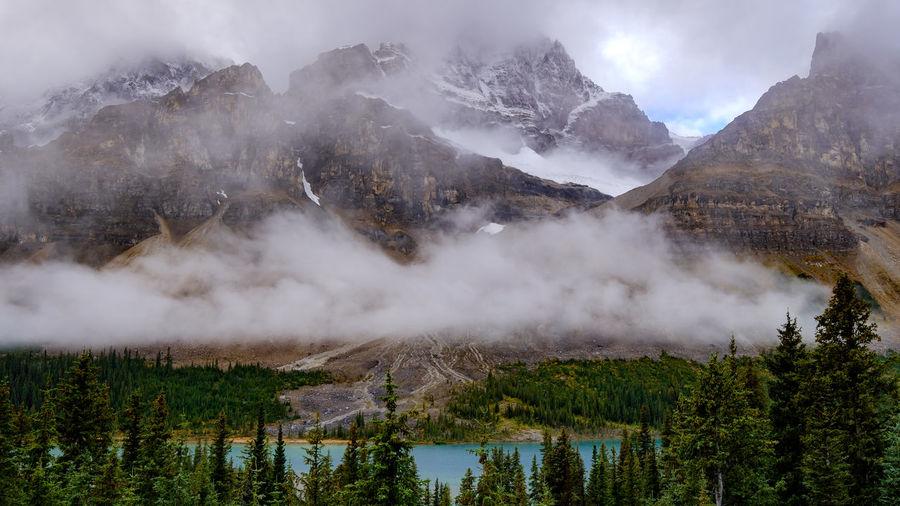 Hidden emerald lake among trees and beautiful foggy mountains, banff, canada.