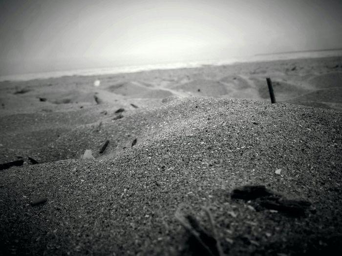 Close Up (:  Sand Black & White