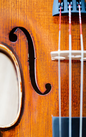 Extreme macro on F hole in a violin belly / body. Vertical full frame top view Body & Fitness Classic Arts Culture And Entertainment Belly Brown Close-up Design Detail Double Bass F Hole Focus On Foreground Full Frame Music Musical Equipment Musical Instrument Musical Instrument String No People Pattern precision Skills  Still Life String String Instrument Violin Wood - Material