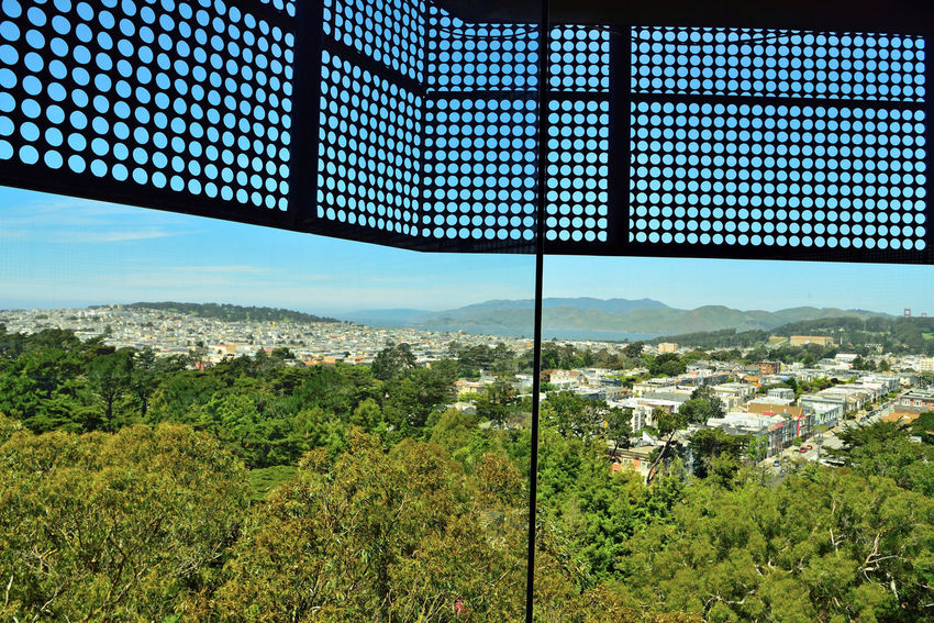DeYoung Museum _ Observation Tower 2 San Francisco CA🇺🇸 Golden Gate Park Fine Arts Museum New Building  Built 2005 Replaced 1895 Original Building Damaged By 1989 Loma Prieta Earthquake Architecture Modern Architectural Detail Exterior : Perforated & Dimpled Copper Plates Architects: Jacques Herzog,Pierre De Meuron,Fong + Chan Observation Tower 144 Ft. Panoramic Views Cityscape San Francisco Bay Marin Headlands Nature In The City Scenic Vista Lookout Deck Landscape_photography Landscape_Collection
