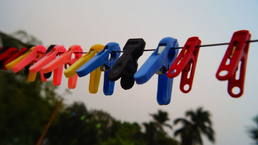 DIFFERENT WE LOOK, BUT OBJECTIVE IS SAME Blue Close-up Clothespin Day Drying Focus On Foreground Hanging In A Row Large Group Of Objects Low Angle View Multi Colored Nature No People Outdoors Red Sky Tree