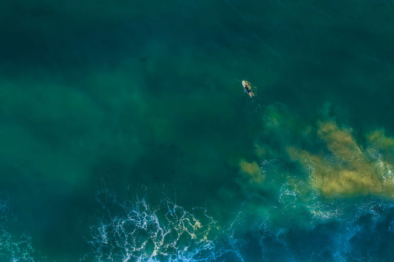 Aerial view of person paddleboarding on sea