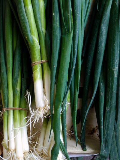 High angle view of leeks for sale at market stall