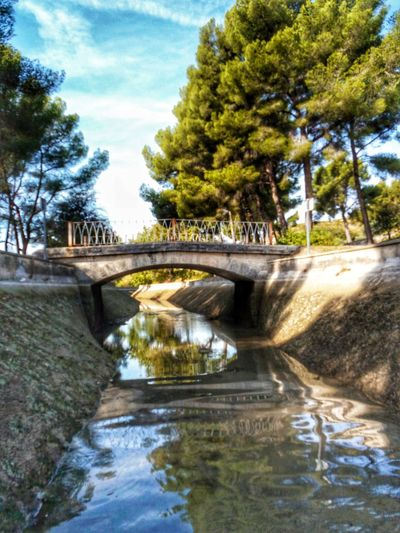 Tree Water Bridge - Man Made Structure Day Connection Growth Outdoors Reflection Built Structure River Park - Man Made Space Nature Architecture No People Sky Footbridge Beauty In Nature Autumn🍁🍁🍁 Provence France France 🇫🇷 Provence Alpes Cote D'azur Canal De Marseille Autumn Colors Reflection_collection Reflections In The Water