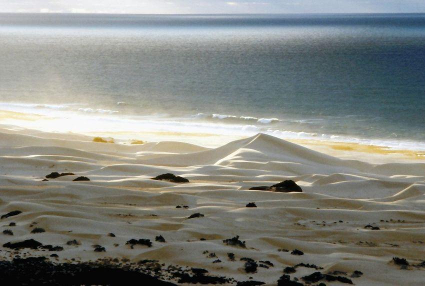 South Australia Beach Beauty In Nature Sand Sand Drift Sea Shot On Film 1994