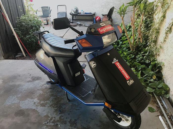 Mopedlife Mopedarmy HondaElite 80ch