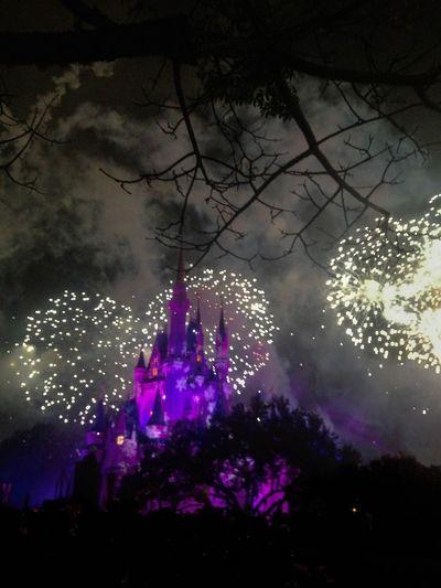 DisneyWorld Disney Castle Orlando Florida Orlando, Florida- Disney Fireworks Castle Florida The City Beautiful GayneGirlPhotography Theme Park Orlando