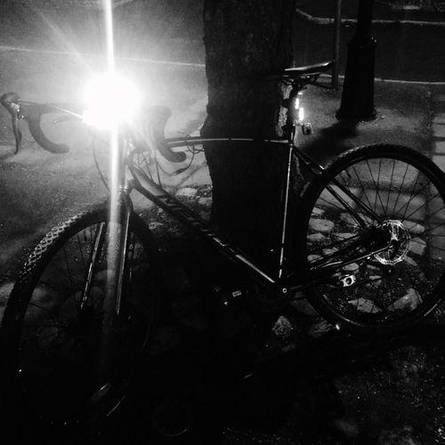 Newbike Morning Transportation