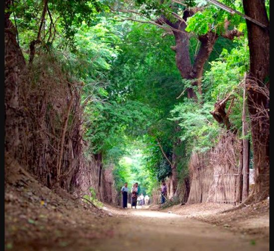 by-way of Village, Myanmar !!! First Eyeem Photo