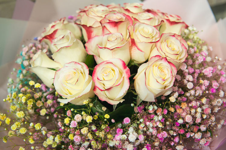 Flower Flowering Plant Freshness Plant Beauty In Nature Fragility Vulnerability  Petal Rosé Close-up Rose - Flower Inflorescence Flower Head Nature High Angle View Pink Color Flower Arrangement No People Bouquet Indoors  Temptation Floral Pattern Bunch Of Flowers