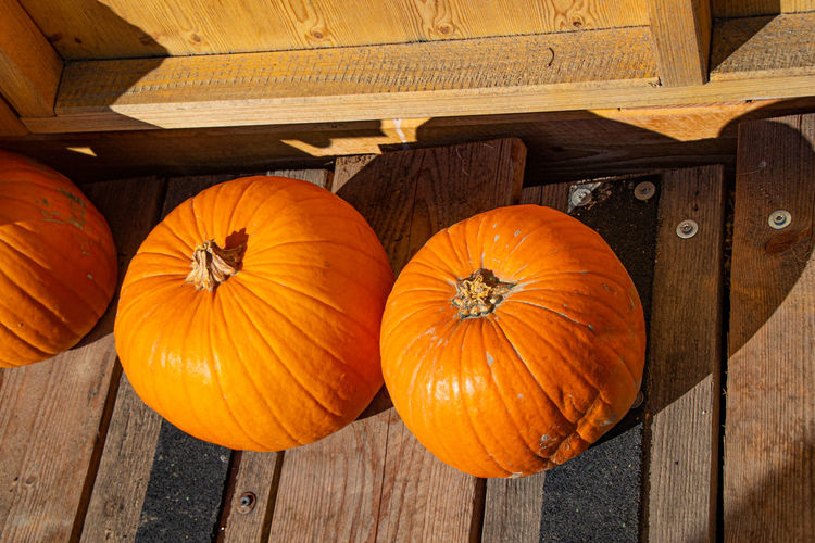 High angle view of pumpkins on wood during autumn