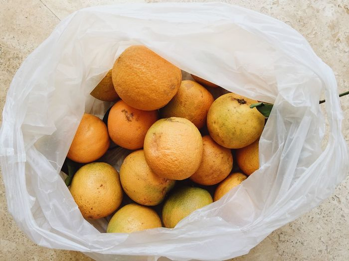 Oranges from the market in a plastic bag Fruits And Vegetables Market Plastic Bag Plastic Environment - LIMEX IMAGINE Shopping Banned Buying Citrus Fruit Close-up Container Enviornmental Environment Environmental Issues Food Fruit Healthy Eating High Angle View Indoors  No People No Plastic Orange Organic Organic Food Plastic Wellbeing
