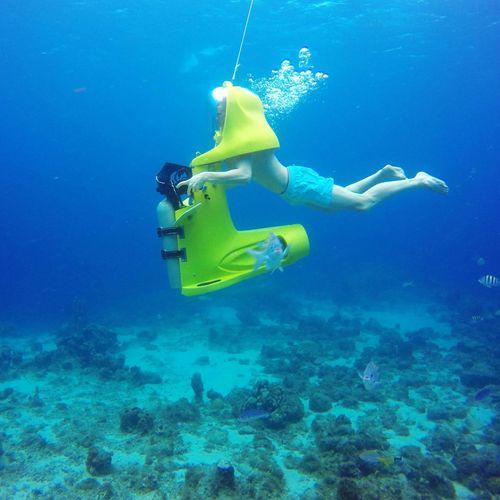 Aquafari Sea Fishes Caribbean Sea Curacao Scooter
