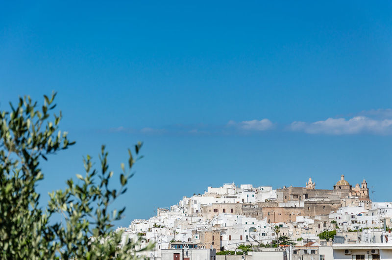 Panoramic view of the white village of Ostuni in Salento on the Adriatic sea Building Exterior Architecture Built Structure Sky City Building Blue Nature Day Residential District No People Water Outdoors Panoramic Osteospermum Ostuni Panoram Panorama Ostuni Medieval Village White Village Salento White Salento Puglia Ostuni Ostuni The White City White Town