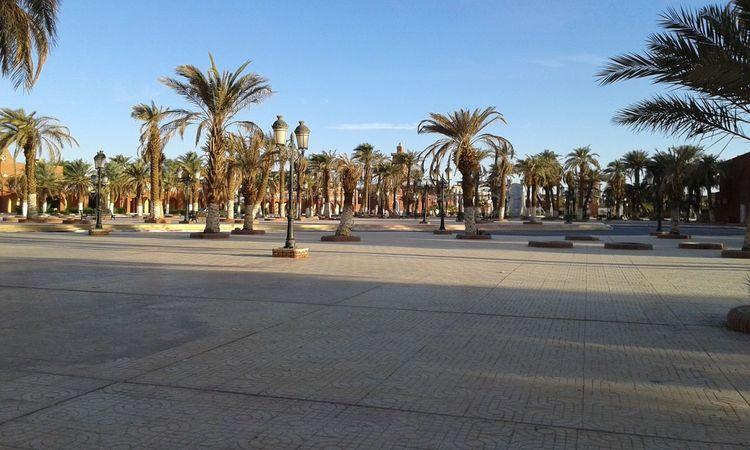 Good Morning! Discover Your City Palmtrees Adrar Algeria