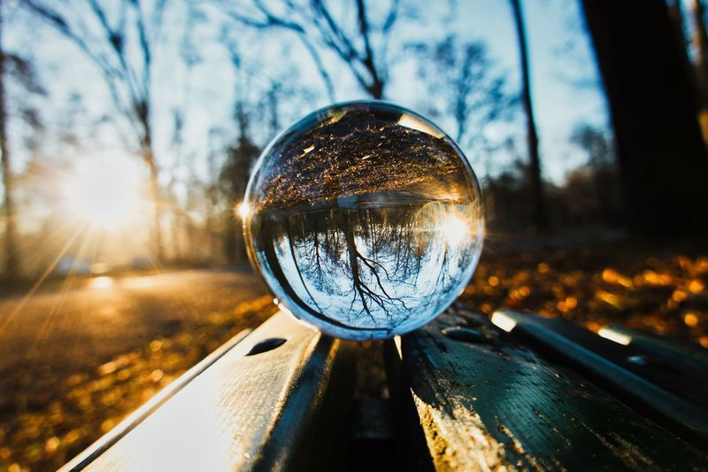 Close-up of crystal ball on wooden bench against trees