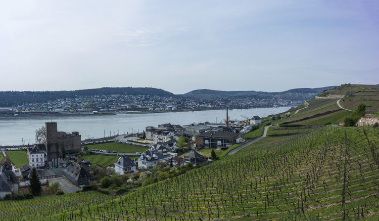 wine! Aerial City Cityscape Day Landscape Outdoors Rhein River Sky Urban Skyline