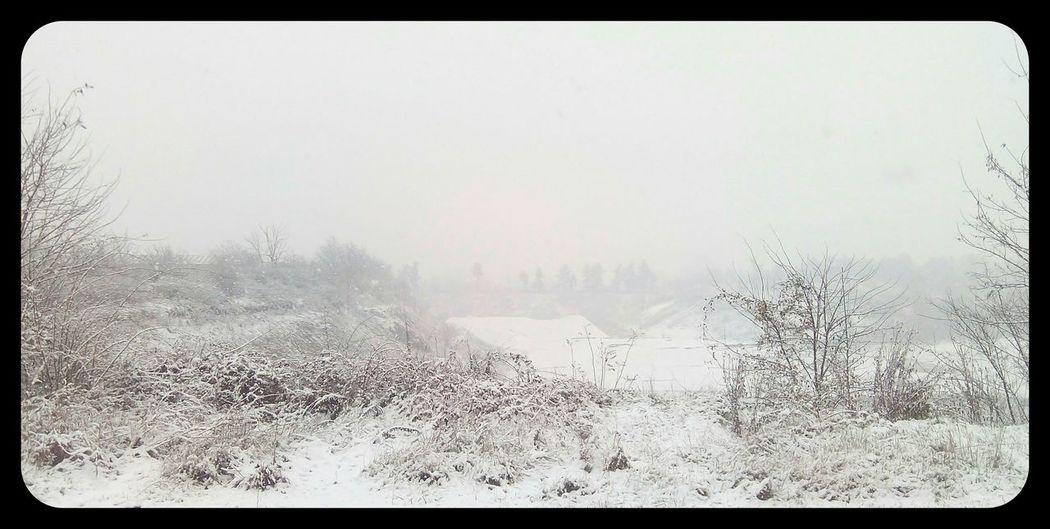 Snow ❄ Neve