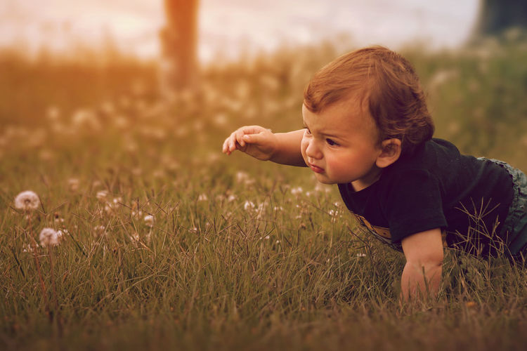 Boys Childhood Day Field Grass Investigate Nature One Person Outdoors People Picking Flowers  Real People Smiling Baby Picking Flowers  Babyboy Baby Photography Growing Up Growth Be. Ready.