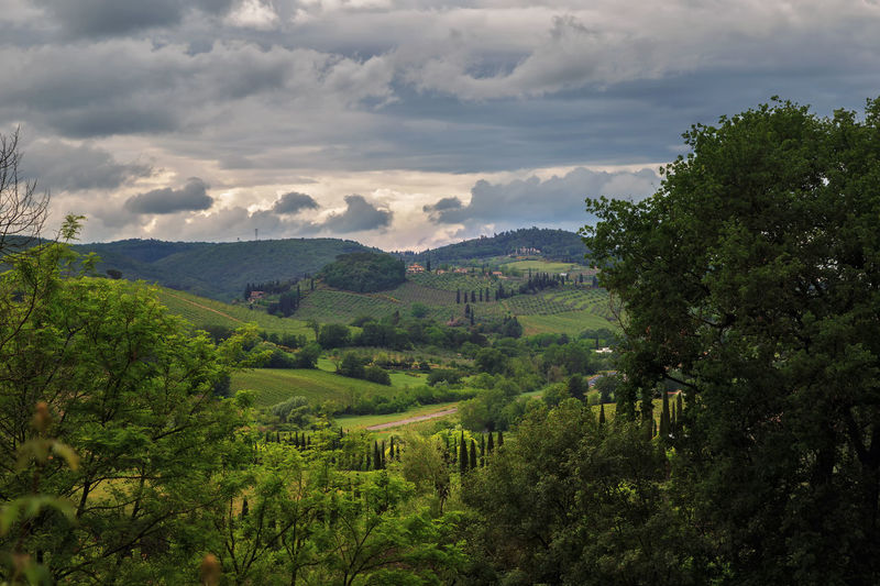 Spring in Tuscany The Great Outdoors - 2018 EyeEm Awards Beauty In Nature Cloud - Sky Environment Foliage Green Color Growth Idyllic Land Landscape Lush Foliage Mountain Nature No People Non-urban Scene Outdoors Plant Range Rolling Landscape Scenics - Nature Sky Tranquil Scene Tranquility Tree