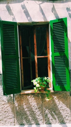 Pollença Mallorca Window Architecture Built Structure Building Exterior Plant Day Flower Outdoors No People Green Color Window Box Nature Happy Holiday Sea Love Art Is Everywhere