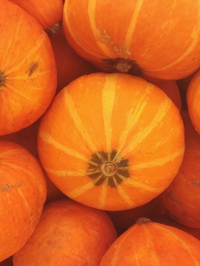 Pumpkin Delicious Pumpkin Season Many Fruits Simple Orange Pumkins Food And Drink Food Healthy Eating Orange Color Wellbeing Freshness Full Frame Pumpkin Close-up Vegetable High Angle View Market Still Life Day Raw Food