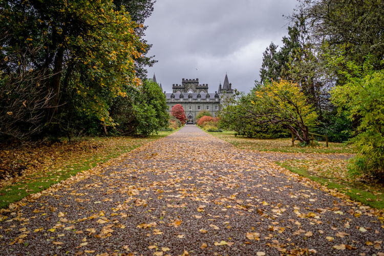 Inverary Castle, the castle that the Downton Abbey Christmas Special was filmed Architecture Argyll And Bute Building Exterior Built Structure Castle Castles Day Diminishing Perspective Downton Downton Abbey Downtonabbeykal Film Filmed Footpath Inverary Inverary Castle Scotland Sky The Way Forward Tree Tv Walkway