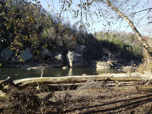 Cumberland River in afternoon light. Afternoon Light Autumn Fallen Tree Kentucky  Nature Riverside Rock Formation Rugged Trees Bare Tree Beauty In Nature Blue Sky Boulder Forest Leaves Nature River Riverbank Rocks Sunlight Tree Water The Great Outdoors - 2018 EyeEm Awards