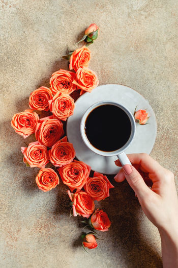 Human Hand Drink Holding Food And Drink Hand Refreshment Cup Freshness Coffee Mug One Person Flower Human Body Part Coffee Cup Directly Above Real People Coffee - Drink Flowering Plant Plant High Angle View Flower Head Flower Arrangement Bouquet Finger