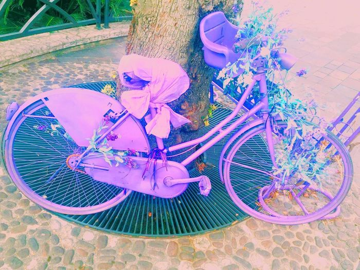 Anotherphoto Same  Bycicle Italy Saturatedcolors Bright Colors Purple Lavender Photography Mode Of Transport Cute First Eyeem Photo Beautiful Bycicle Photography