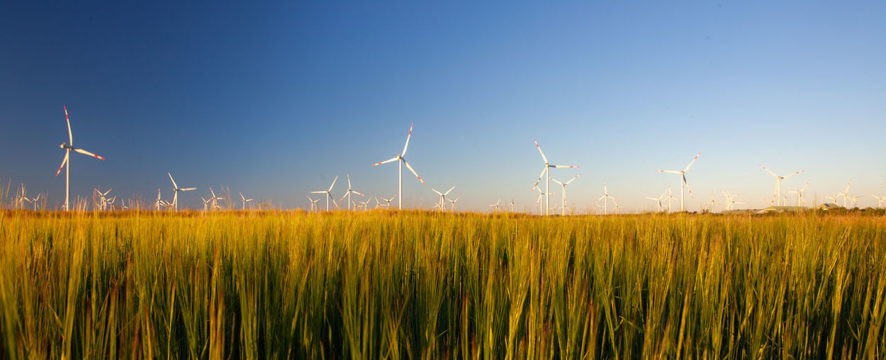 Wind Turbine Sky Turbine Environment Fuel And Power Generation Renewable Energy Environmental Conservation Wind Power Alternative Energy Field Landscape Land Nature Rural Scene Plant Beauty In Nature Blue Grass Growth No People Outdoors Sustainable Resources EyeEmNewHere