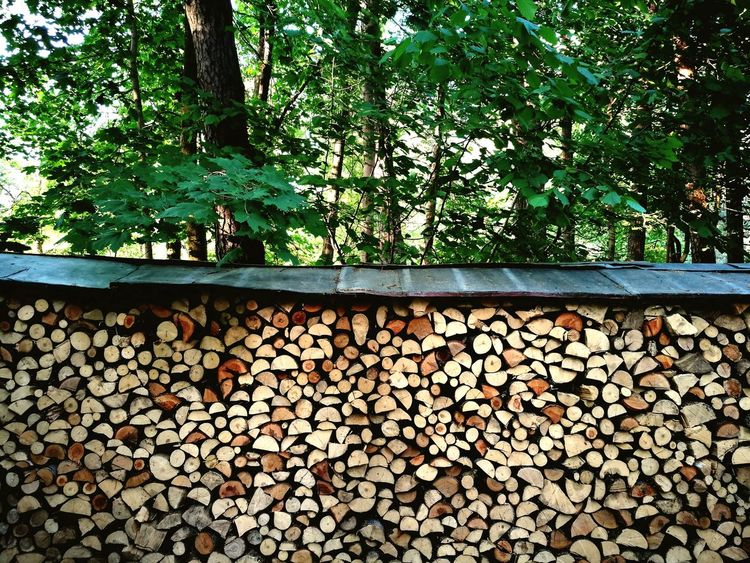 be ready Tree Forestry Industry Woodpile Stack Timber Log Close-up Firewood Wood Tree Trunk Woods Heat Fire Pile