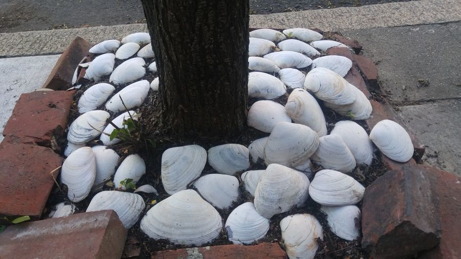 High angle view of stones on stone wall